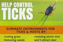 Tick related diseases