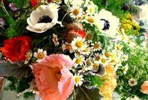 Larkspur bouquets / Bouquets we've created