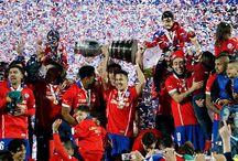 Copa América / Antofagasta - Santiago - Valparaíso - Viña del mar - La Serena - Rancagua - temuco -                                                                              Concepción sedes copa América 2015