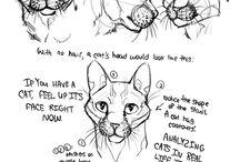 Animal art and design