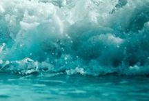 Wonder of wild free ocean and sea