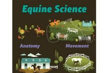 WinterPromise's Equine Science! / WinterPromise's Equine Science Program is so unique as a science program. Spend a year learning about the anatomy, movement, care and behavior of horses. This board will feature access and links to great resources about our program, or resources that will enhance your experience of our Equine Science program.