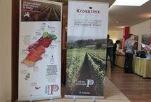 Portugalská vína v Praze / Portugalsko, jak sami Portugalci tvrdí, je zářivou zemí, která je obdařena výjimečnou geografii, geologií a topografí, jež společně generuje tekutý poklad v podobě skvělého vína. Pravdou je, že u nás se o portugalském vinařství ví pramálo.