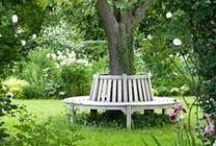 Garden / piha ja puutarha
