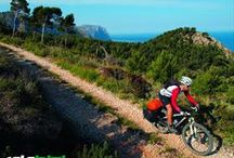 Pabisa Bikes / Pabisa Bikes is an exclusive product of Pabisa Hotels   In cooperation with our partners, Diana Sportreisen and Bicycle Holidays Max Hürzeler, we can offer you different packages for your cycling holidays in Mallorca.  Further information about Pabisa Bikes and its partners can be found here: www.pabisabikes.com