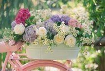 Todo para bodas
