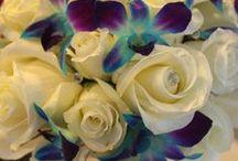 flowers****