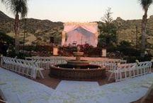 Eden and Eli's wedding