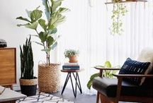 • Indoor plants • / Our selection of amazing ideas to add a touch of green to your home :)