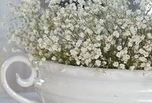 Dreamy Peaceful White / Home decor, flowers, pillows, and accents in white / by Nacene Prchal