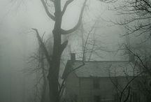 Misty Landscapes / Landscapes touched by fog and mist