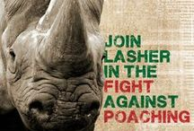 Fight against Poaching / Lasher Tools supports the fight against poaching  Purchase any of Lasher's Big 5 Products and a portion of the profits will be donated to Sanpark's Honorary Rangers
