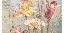 Hadas y duendes / cuentos