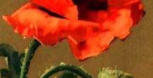 Decoupage flores &