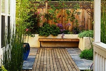 small gardens/outdoor living