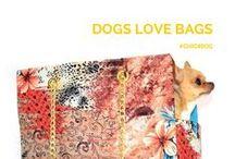 """Chic4Dog"" Dogs ♥ bags / Dogs love #bags, too. Don't you believe it? Scroll down this board and change your mind | Anche i #cani amano le borse. Non ci credi? Scorri la board e cambia idea #Chic4Dog → http://www.chic4dog.com/"