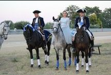 A.S.E.I Spettacoli Equestri / foto degli artisti associati ad ASEI