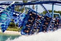 Sea World Attractions / Get a chance to see what Sea World Orlando has to offer!