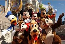 Disney Area Attractions / View pictures from all of the wonderful Disney parks from our guest and Starmark.