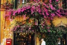 feel free to take me here...