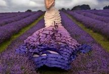 All things of the purple HUE!