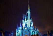 [Disney] / disney everything