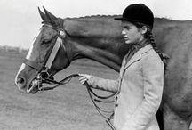 Classic design. Equestrian flair.