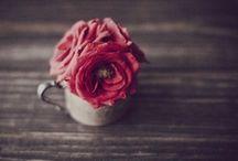 Rose decor