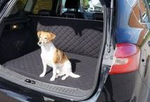 Pets Travelling in Style {Made in Britain}