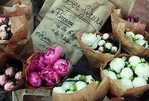 Love: Flowers