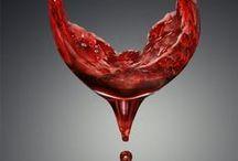 vino (Wine)