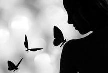 Silhouettes & Shadows