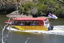 Kalgan Queen Scenic Tours & Albany Clydesdale Tours  / Leisurely informative cruise on the Kalgan and beautiful tour on the Clydesdales trip. Head to www.albanyaustralia.com for all the information on these great tours!