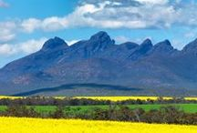 Porongorups, Stirling Ranges & Bluff Knoll / Porongorups are approximately 45km East of Albany. Stirling Ranges are approximately 100km East of Albany, and is where Bluff Knoll resides.