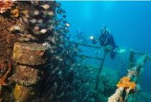 Shipwreck Diving / Cheynes 3 - Built in 1947, was sunk in 1982 off Michaelmas Island to form an artificial reef. HMAS Perth - Built in 1965, was sunk in King George Sound just off Seal Rock.