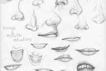 anatomia rysunku