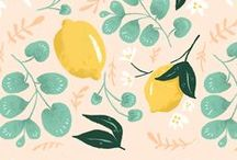 Citrons & Agrumes