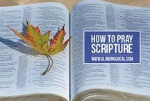 Resources / Resources to point you towards Christ.