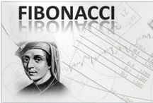 FOREX TRADING BY FIBONACCI TEAM