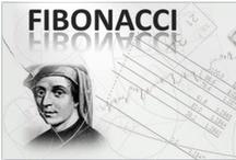 FOREX TRADING BY FIBONACCI TEAM