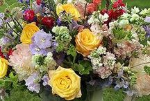 Blumenarrangements Flower Arrangements / by Iluskena