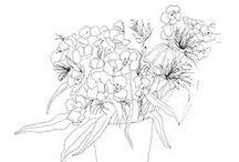 __All about flowers__ / Illustrations de la créatrice de la marque All about flowers. Tricia lb - http://www.all-aboutflowers.fr  Fleurs, aquarelle, encre de chine, jeux de transparence, photo,  illustrations, affiches, cartes postales...