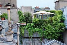 __Un jardin sur le toit__