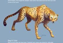 Animals - Tutorial - Sketch