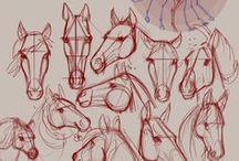 Horse - Tutorial - Sketch