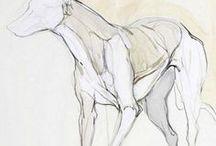 Dog - Tutorial - Sketch