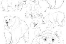 Bear - Tutorial - Sketch