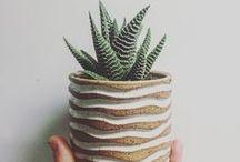 32 | Ceramics
