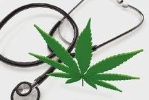 Medical Marijuana Health & Wellness / Medical information on the healing cannabis plant.