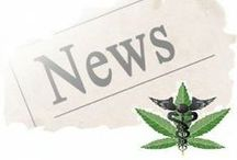 Medical Marijuana NEWS / All the latest news about cannabis from around the web.